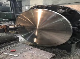 ASME SA182 Stainless Steel Plate Flanges