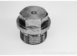 304 stainless steel plug hex flange face with side plug